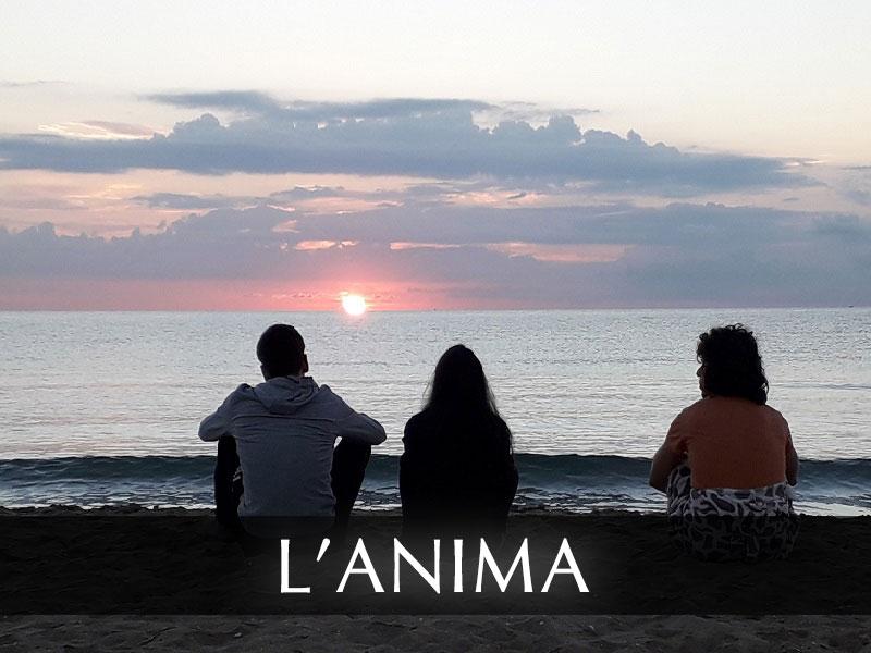 08_L_Anima_Retro